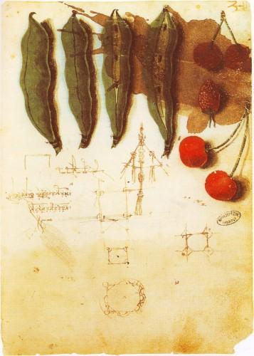 Leonardo_da_Vinci-024