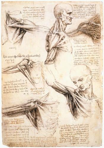 Leonardo_da_Vinci-033